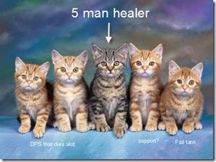 five-cats-1